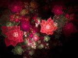 عکس فرکتالی و انتزاعی از گلهای زیبا