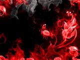 تصویر انتزاعی گلهای آتشین