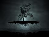 عکس انتزاعی درخت معلق