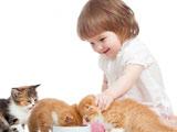 عکس بازی دختر بچه با گربه ها