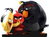 عکس فیلم کارتونی پرندگان خشمگین