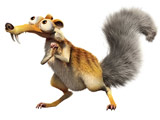 عکس سنجاب عصر یخبندان
