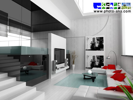 دکوراسیون مدرن سیاه و سفید black and white decoration