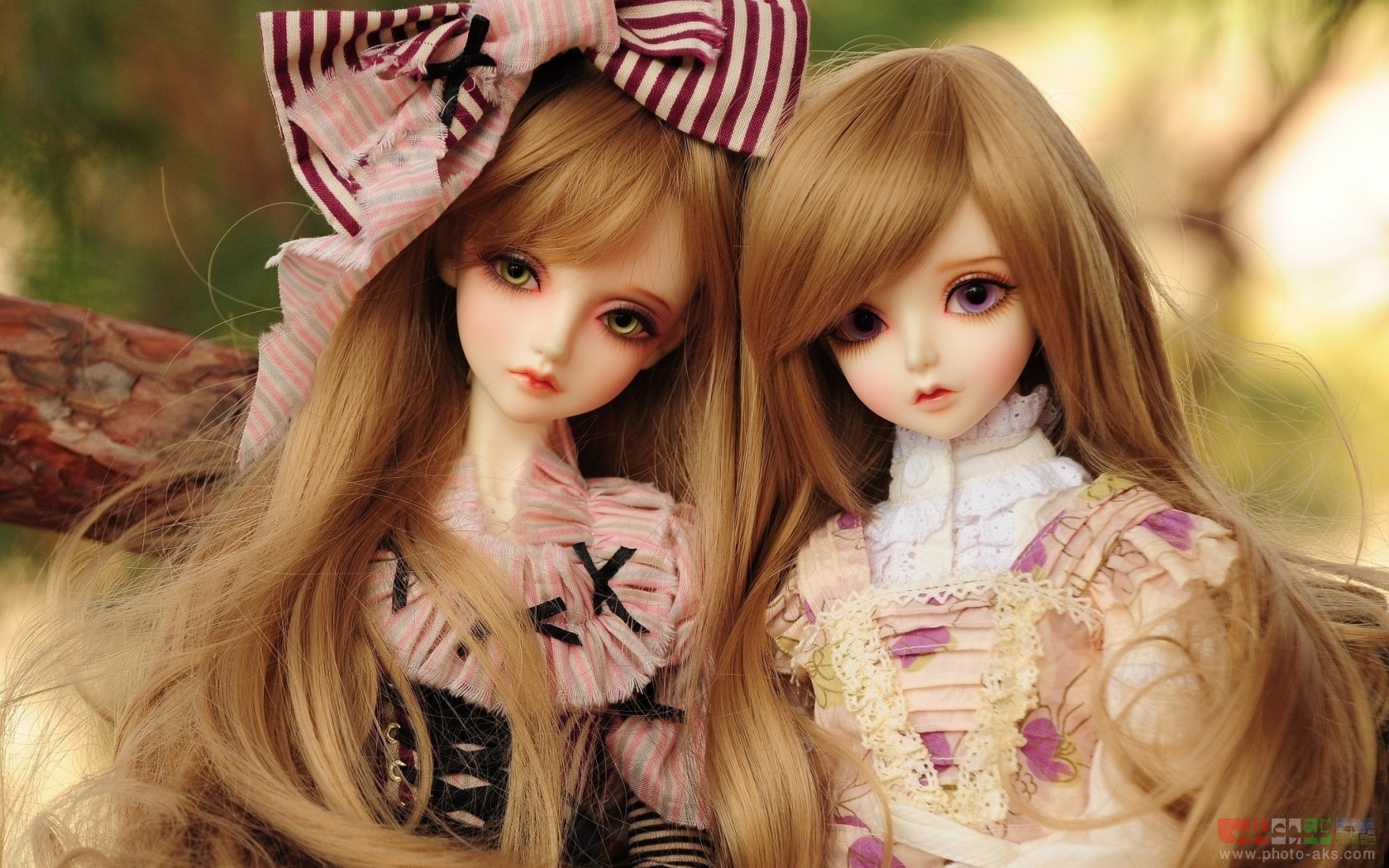 http://pic.photo-aks.com/photo/images/dolls/large/two_beautifull_girls_doll.jpg