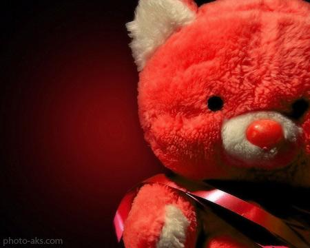 پوستر زیبای عروسک تدی صورتی pink teddy bear