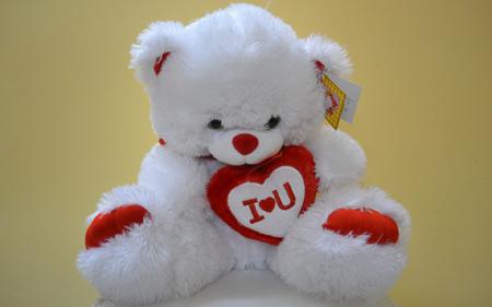 عکس خرس عروسکی تدی teddy bear white