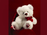 خرس عروسکی پشمالو سفید