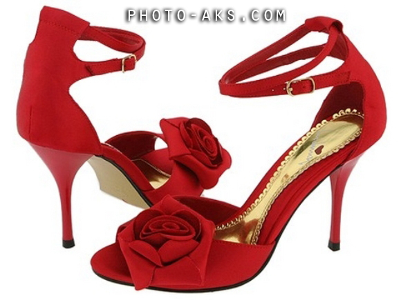 [تصویر:  rose-shoes-women.jpg]