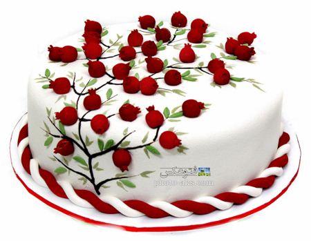 مدل کیک خامه ای با تزئین زیبا Pomegranate cake