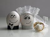 عکس بامزه تخم مرغ عروس داماد