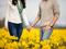 عکس عاشقانه در میان گلها