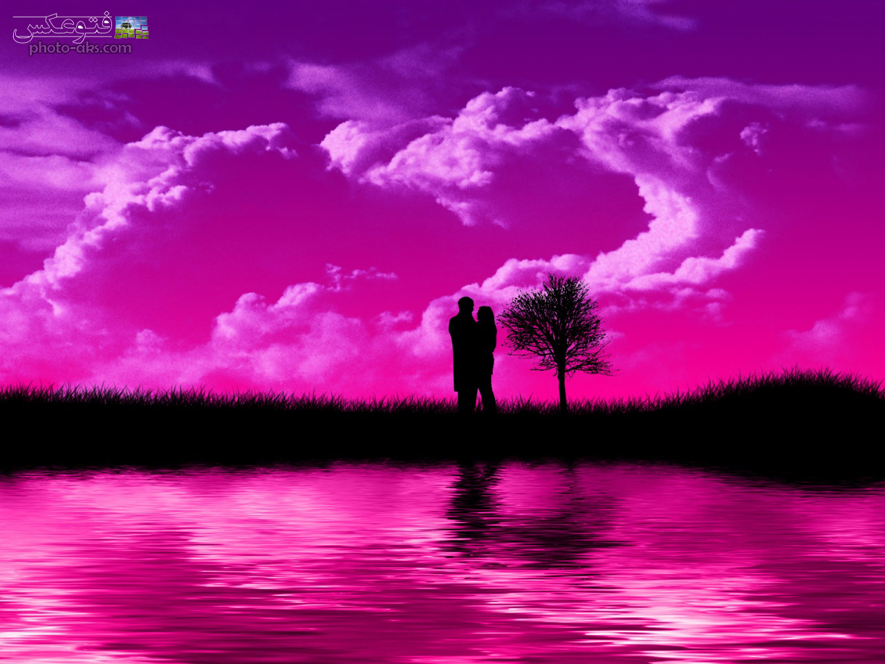 Pink Love Wallpaper: Romantic Love Hd Wallpapers Bos Hd Wallpapers