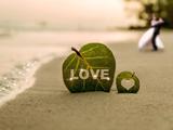 عکس رمانتیک زیبا در کنار ساحل