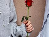 عکس عاشقانه تقدیم گل رز