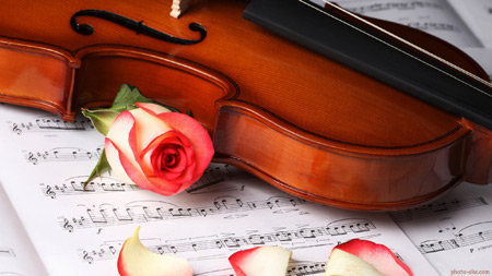 عکس گل رز و ویولن calssical music wallpaper
