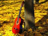 عکس گیتار قرمز در پاییز