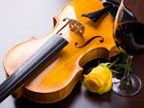 عکس ویولن در کنار گل رز زرد