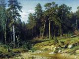 نقاشی زیبا از طبیعت جنگل