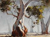 زیباترین نقاشی های درخت و جنگل