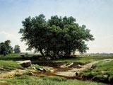 نقاشی زیبای طبیعت درخت