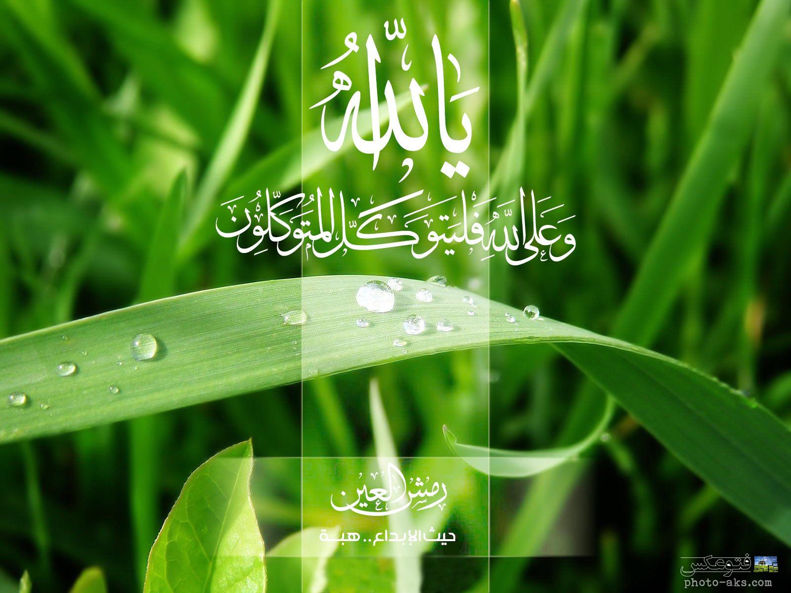 زیباترین پوستر های اسلامی