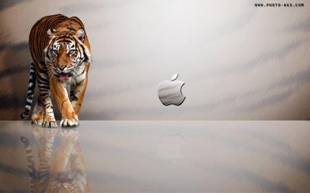 پس زمینه اپل و ببر apple mac tiger wide wallpaper