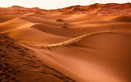 منظره شنهای بیابانی desert sand landscape