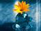 پوستر زیبای گل و تسبیح