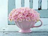 عکس گلدان گل صورتی خوشگل