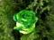گل رز سبز تزئین شده مصنوعی