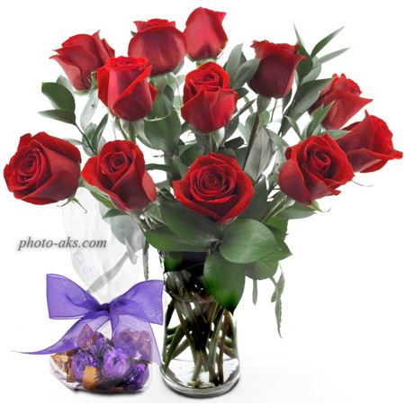 گلدان گل رز قرمز red roses pot
