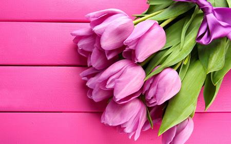 پوستر دسته گل لاله صورتی pink tulips flowers
