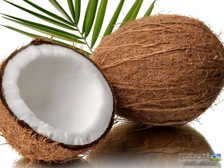 عکس نارگیل Coconut picture
