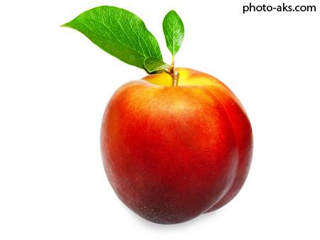 هلو peaches