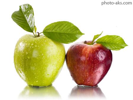 سیب قرمز و سبز apples wallpapers