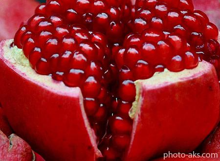 دانه های انار رسیده fruit pomegranate