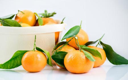 عکس میوه های نارنگی aks mive narengi reside