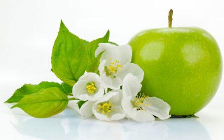 میوه و شکوفه درخت سبز سیب miveh va shokofeh derakht sib