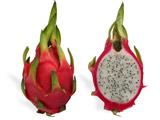 عکس میوه اژدها