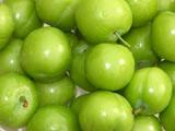 عکس آلوچه یا گوجه سبز