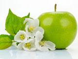 میوه و شکوفه درخت سبز سیب