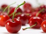 عکس میوه گیلاس قرمز