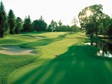 عکس زمین سبز ورزش گلف