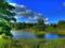منظره طبیعت سرسبز آلمان