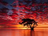 مناظر دیدنی از سواحل استرالیا