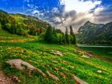 منظره بهاری طبیعت سوئیس