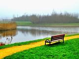 منظره صبحگاهی طبیعت کنار رودخانه