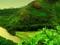 طبیعت کوهستان سبز سبز