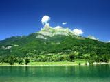 منظره سبز و جنگلی کوهستان