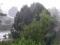 منظره بارانی طبیعت